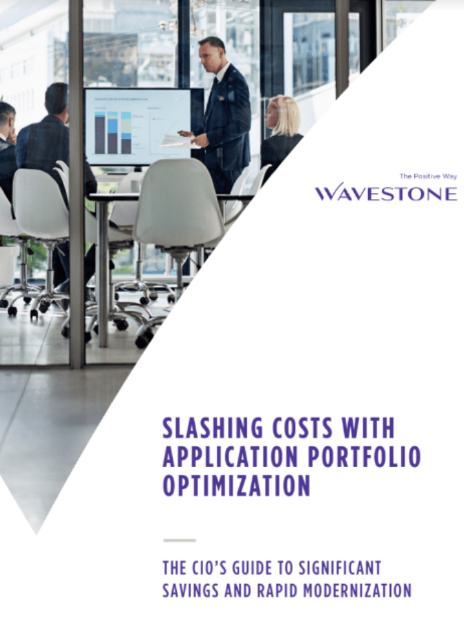 Slashing Costs with Application Portfolio Optimization