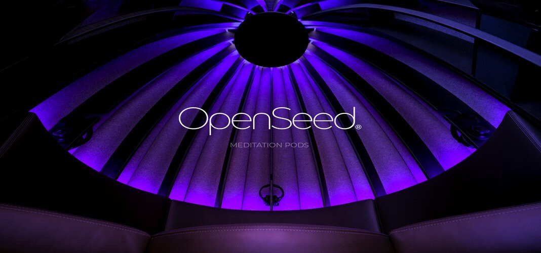 Here's What OpenSeed's $25,000 Meditation Pod Offers